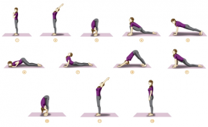 yoga, total yoga, surya namaskaar, sun salutation, yoga india