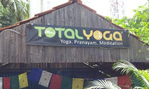 yoga, yoga retreat, total yoga, yoga retreat rishikesh, yoga himalayas, meditation retreat, pranayam