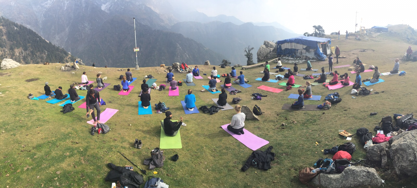 yoga, total yoga. yoga himalayas, yoga retreat, yoga retreat india