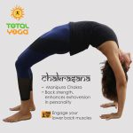 Chakrasana, wheel pose, flexibility, strength, balances hormones, cardiovascular benefits, know your asana, backward bend
