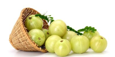 Amla, gooseberry, total yoga, clean eating, super fruits, super food