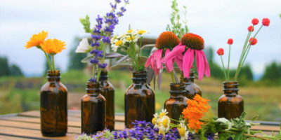 essential oils in yoga, Total yoga, healing, aromatherapy